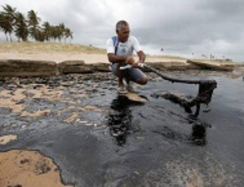 Pesquisadores alertam para os riscos da exposição ao óleo nas praias do Nordeste